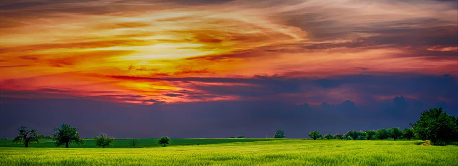 david-london-agriculture-horizon