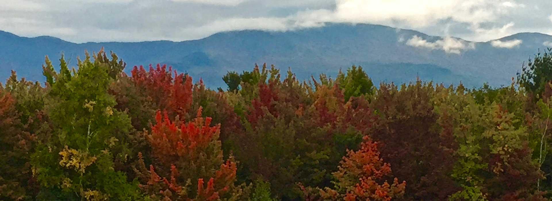 david-london-autumn-mountains